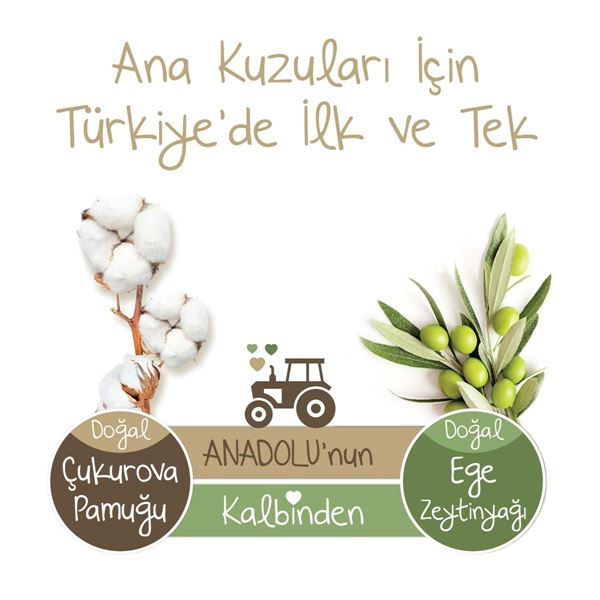 Baby Turco Doğadan 2 Numara Mini 210 Adet